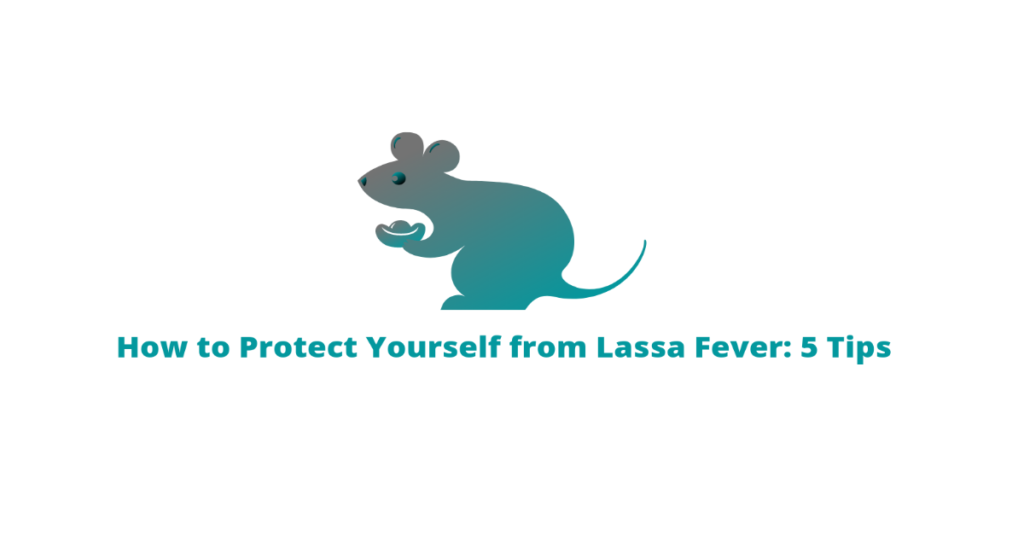 how to protect yourself from Lassa fever tomvad